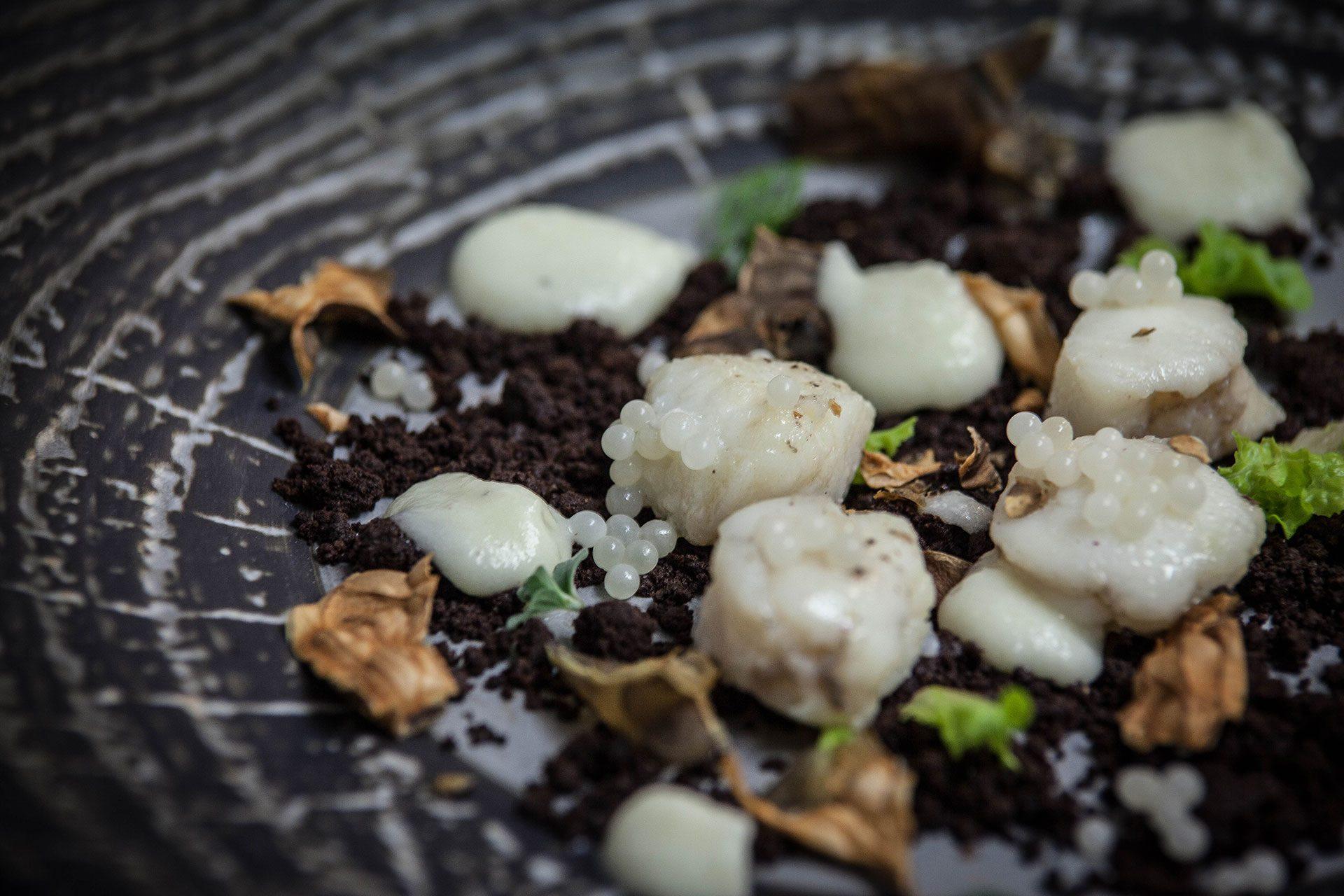 ristorante il tegolo livorno pesce fresco caviale lumaca cioccolato menu capodanno